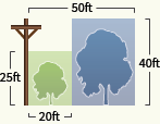 Utility pole illustration